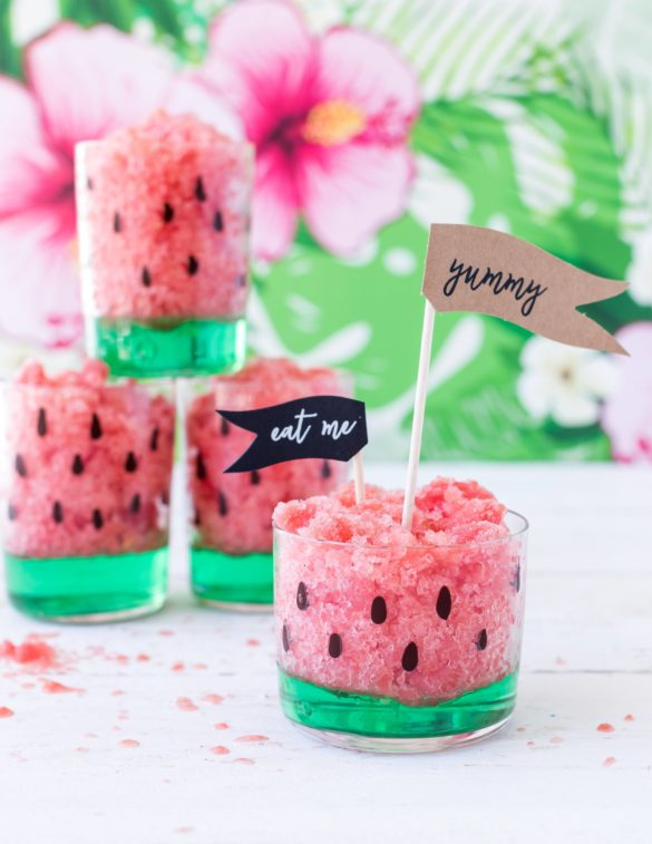 Wassermelonen Granita aus Tropical Party Backbuch Sommer Ananas #Wassermelone #Ananas #Kaktus #tropical #backbuch #backen #tropicalparty | Emma´s Lieblingsstücke